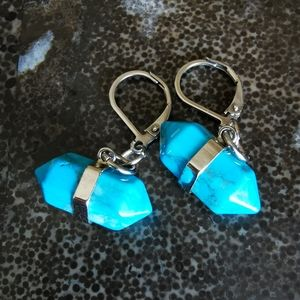 Handmade Turquoise Howlite Double Point Earrings